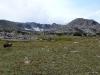 Grassy Pass view